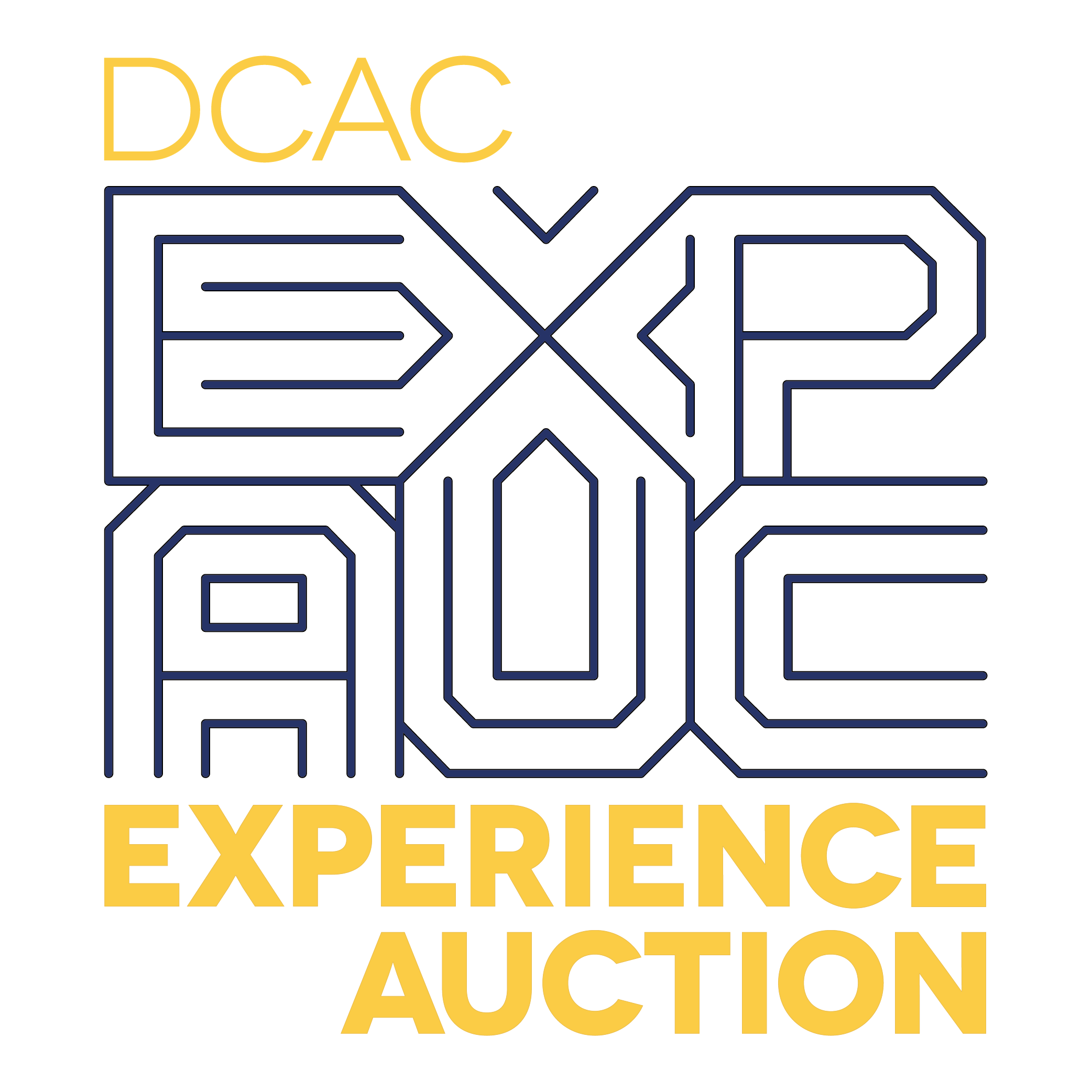 DCAC Experience Auction